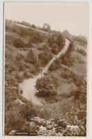 Somerset postcard - Porlock Hill - RP