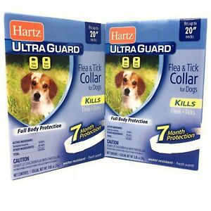 Flea Collar for Small Dogs 2 PACK  Fits Necks Up to 20 Inches