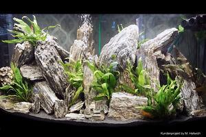 Woodstone Bruchsteine Aquarium Aqua Landscaping Malawi Dekosteine versteinertes