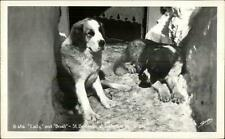 Timberline Lodge Or St. Bernard Dogs Lady & Bruel Real Photo Postcard