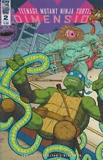 August  2017 IDW Issue 2 Cover A  Teenage Mutant Ninja Turtles Dimensions (Comic