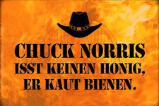 Chuck Norris Spruch 8 Blechschild Schild gewölbt Metal Tin Sign 20 x 30 cm