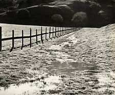 1960s Vintage WYNN BULLOCK California Fence Bird Field Landscape Photo Art 11X14