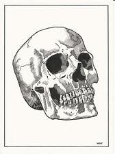 Skull Original Dark Art fantasy pinup tattoo Walking dead Comic Halloween Goth