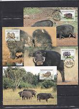 Guinee 2009 - Maxi Cards - Dieren / Animals / Tiere  (WWF / WNF)