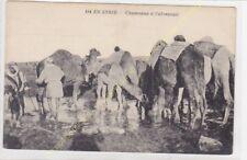 CPA SYRIE chameaux à l'abreuvoir Edit THéVENET