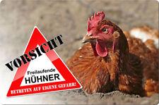 KFZ 019 wetterfest Schild oder Aufkleber Hahn Huhn 12 x 12 bis 25 x 25 cm