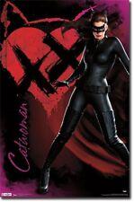 Dark Knight Rises Catwoman Anne Hathaway Poster Art Print 22x34 TR2019