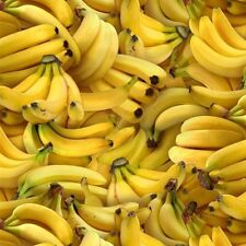 Food Festival Banana Bunches of Yellow Bananas Cotton Fabric Fat Quarter