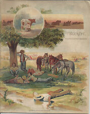 THE BUCKEYE,1893 DESCRIPTIVE CATALOG BUCKEYE HARVESTING MACHINES,AULTMAN,MILLER