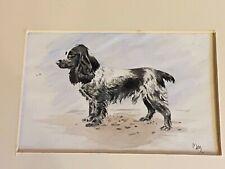 Orig Antique English Springer Spaniel Dog Watercolour Painting 1935