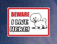 Attention, je vis ici-BICHON FRISE Maison / Maison fenêtre / porte / porche autocollant imprimé