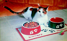 pet bowls and placemat set too cute DONT FORGET YOUR PET THIS HOLIDAY NEW 2 CUTE