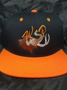 """WSP """"Big Wooly Mammoth"""" Snapback Hat Widespread Panic 42 hat colors WSMFP"""
