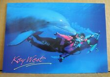 Key West Florida - dolphin & two Scuba divers - large modern postcard - porpoise
