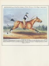 """1974 Vintage HORSE RACE """"'MR. WM. HUTCHINSON ON STAREING TOM"""" COLOR Lithograph"""