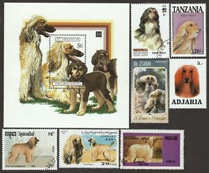 AFGHAN HOUND ** Int'l Dog Postage Stamp Art Collection ** Great Gift Idea **