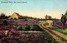 Lüneburger Heide, Weg Wesen-Lutterloh, 1910