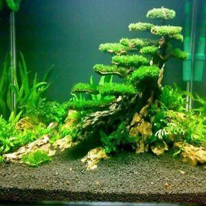 Natural Coral Stone Filter Landscaping Fish Tank Aquarium Decoration Accessories