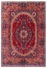 Hand Knotted Red Blue Orange Wool Mood Oriental Area Rug Carpet 10 x 13