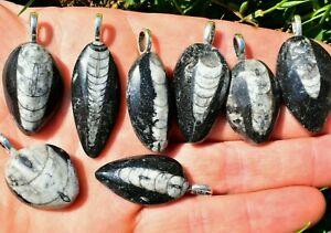 Orthoceras Fossil Pendant, Pendant Only Crystal Jewellery FLASH SALE  UK Seller✔