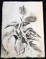 Vintage Original Ink Drawing Painting Plant Foliage Floral Black & White Signed