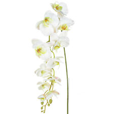 Orchid Phalaenopsis Artificial Silk Trailing 130cm White