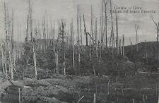 * GORIZIA GORZ - Trincee nel bosco Panovitz WWI