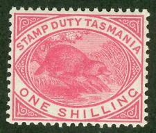 SG F29 Tasmania 1/- rose pink. A pristine unmounted mint example CAT £140