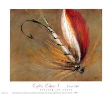 FLY FISHING ART PRINT Captive Colors I by James Elliot 12x14 Fish Hook Poster 1