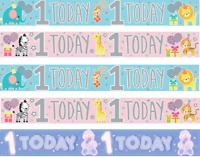 Girl Boy HAPPY 1st BIRTHDAY 1 Today Party Decoration Blue Pink Foil Banner
