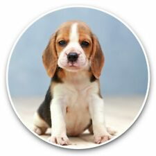 2 x Vinyl Stickers 30cm - Cute Little Beagle Puppy Dog  #44787