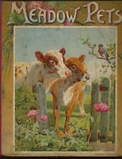Meadow Pets  illustrated by Wevv and Montefiore