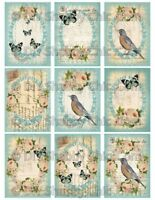 Furniture Decal Image Transfer Vintage Antique Birds Roses Butterfly Shabby Chic
