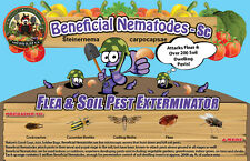 50 Million Live Beneficial Nematodes Sc - Flea and Fly Exterminator