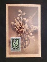 UNGARN MK 1951 FLORA MAIGLÖCKCHEN MAXIMUMKARTE CARTE MAXIMUM CARD MC CM c6699