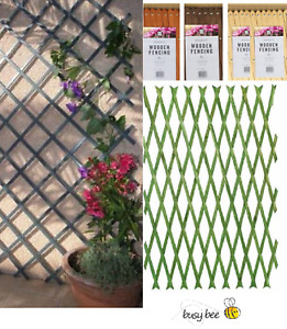 EXPANDING WOODEN WOOD GARDEN TRELLIS 6ftx 2ft / 1.8M X 60CM CHOOSE COLOUR
