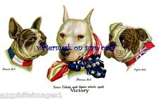 Wallace Robinson~Ww1 Military~Pitbull,Bulldog, French Bulldog New Lg Note Cards