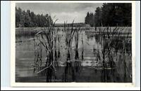 HANSTEDT Lüneburger Heide AK Fisch-Teich am Langenbeck