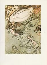 "1975 full Color Plate ""The Pool of Tears, Alice in Wonderland"" by Arthur Rackham"