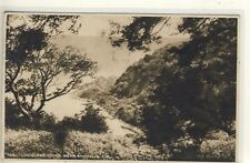 C 203  ISLE OF WIGHT - POSTCARD OF LUCCOMBE CHINE,SHANKLIN,1949 - Dixon