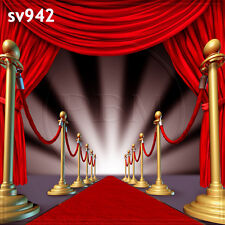 10x10 FT CP (COMPUTER PRINTED) PHOTO SCENIC BACKGROUND BACKDROP Sv942