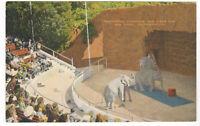 San Diego, PA Zoo Performing Elephants Vintage Postcard Kropp Old Unused