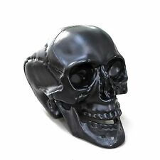 Realistic Life Size Skull with Movable Jaw for Art, Craft, Halloween in Black