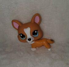 Littlest Pet Shop Authentic Corgi Dog #1360 Tan White Blue Eyes