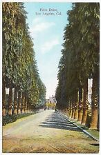 PALM DRIVE - Los Angeles - CALIFORNIA USA - Trees - c1900s era postcard