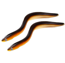 "2PCS Silicone Big Soft Fishing Lure Deep Saltwater Bait Eel 11.8"" 58g Swim Smell"