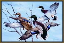 "Mallards Area Rug 37""x52"" WIlderness Wildlife Geese Ducks Carpet Flooring Decor"