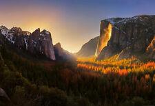 Fototapete Wandtapete + Gratis Selbstklebend 366x254cm Yosemite National Park