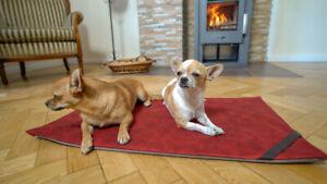 Elaspace® orthopädische 3 in 1 Haustierdecke für Hund und Katze | L1 | rot
